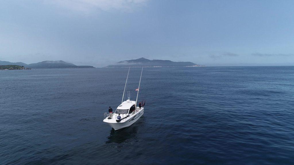 釣果情報 8月上旬 祝☆進水 DFR33 マイナーチェンジ全国1号艇『HRM』